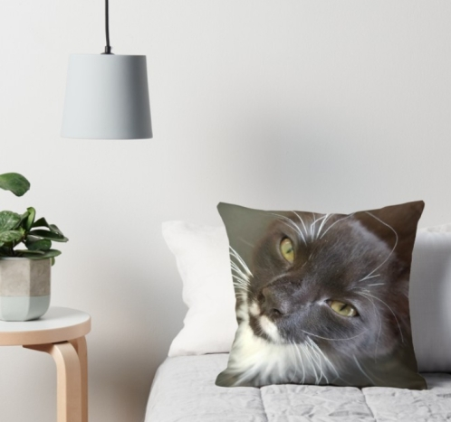 Will you love me forever cushion