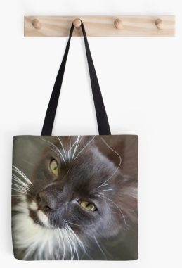 Will you love me forever tote